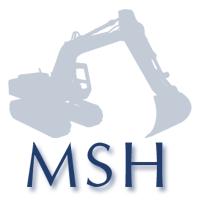 Msh 1